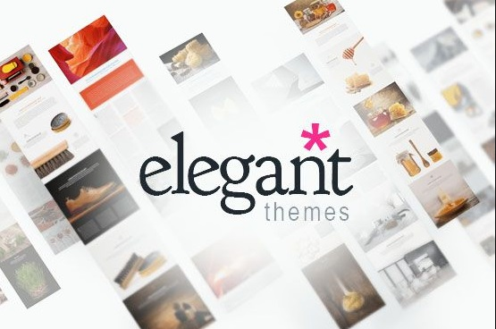 elegant themes provide comprehensive themes and plugins, high security and constant support.