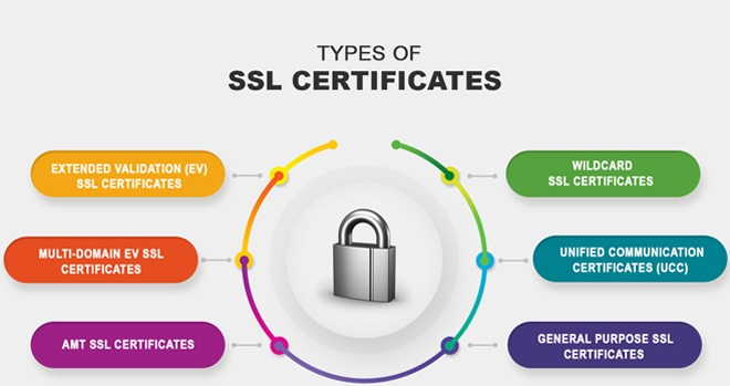 SSL certificates significantly boost your WordPress site security
