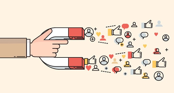 Social proof acts as a lead magnet and conversion tool.